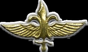 Эмблема подразделения «Сайерет Маткаль»
